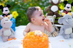 smash the cake bichos